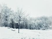 17th Jan 2021 - Snow.
