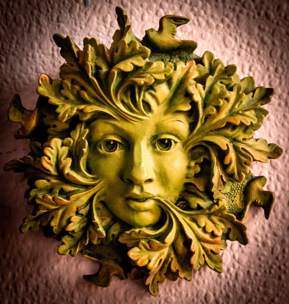The Greenwoman by swillinbillyflynn
