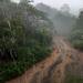 Not the Amazon but Nanango Queensland