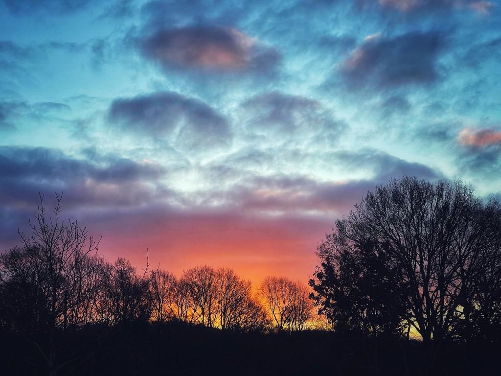Sunrise  by mattjcuk
