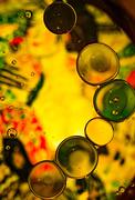 17th Jan 2021 - Klimt & Oil