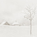 2020-12-17 snowy