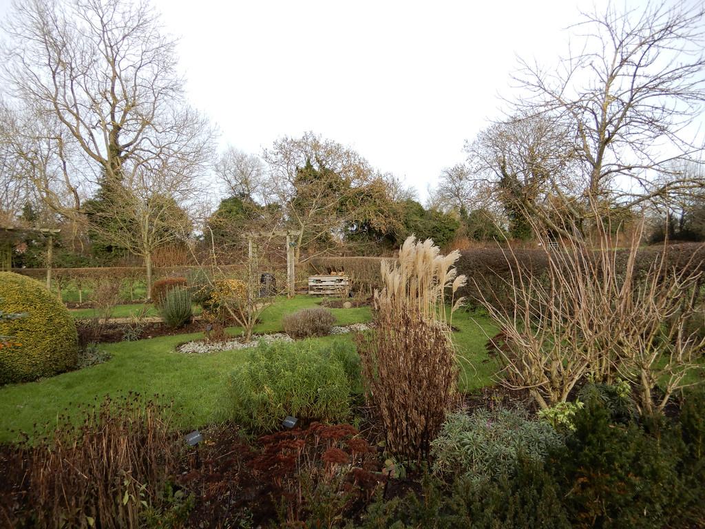 Winter gardens by busylady