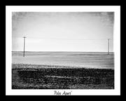 15th Jan 2021 - Poles Apart