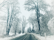 18th Jan 2021 - Road trip.
