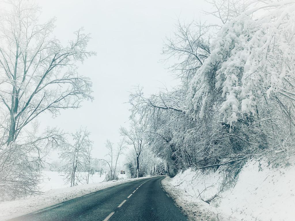 Snowy road.  by cocobella