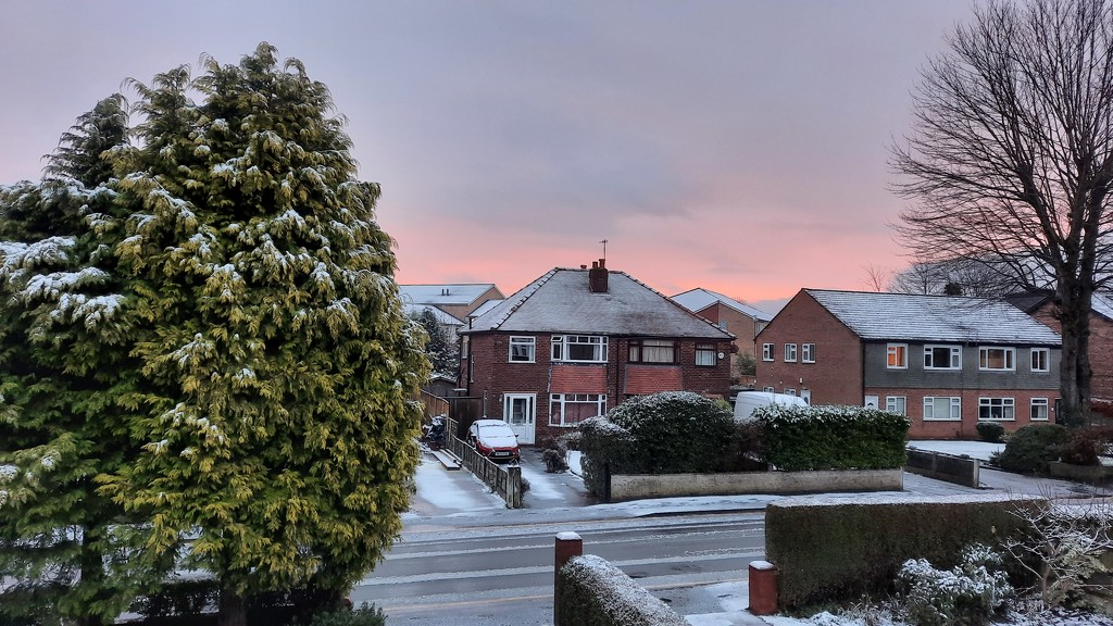 First snow  by janturnbull