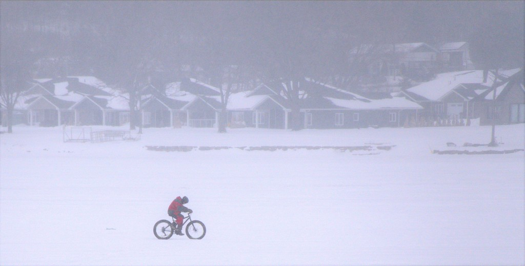 Biking in a Snowstorm  by radiogirl