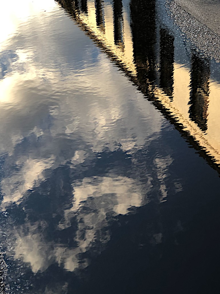 Reflection in a puddle by congaree