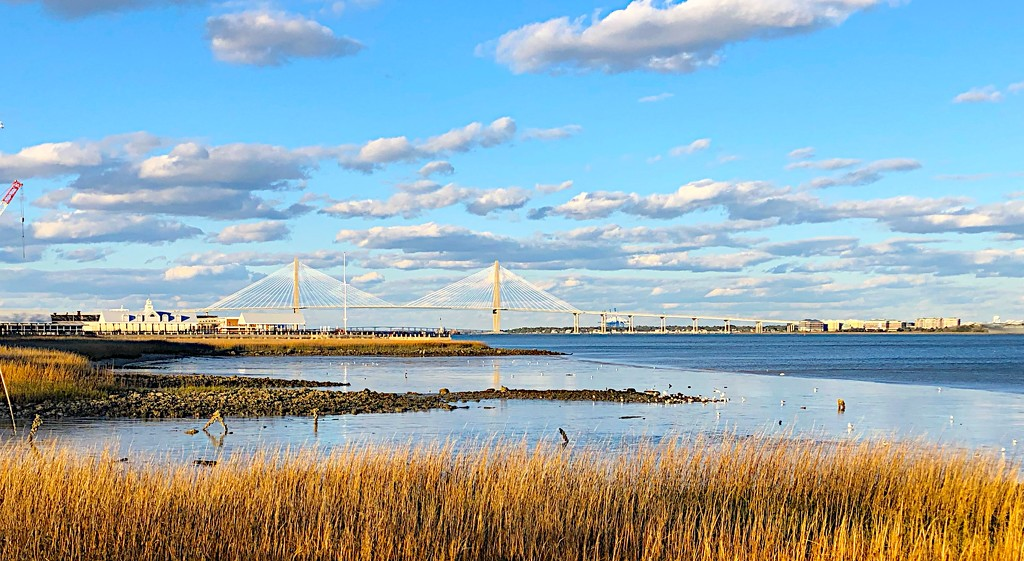 Charleston Harbor at low tide from Waterfront Park by congaree