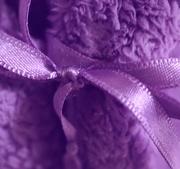 18th Jan 2021 - pale purple peignoir
