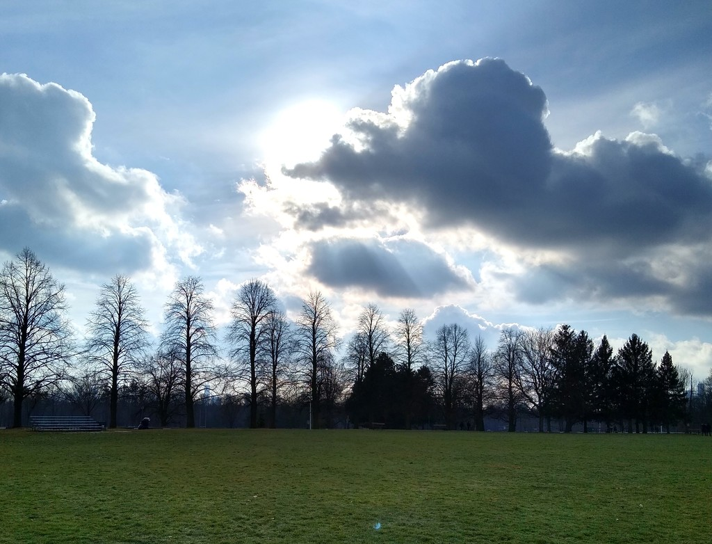Blue sky, green grass, partially sunny.. by bruni