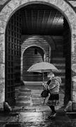 18th Jan 2021 - umbrella and stripes BoB