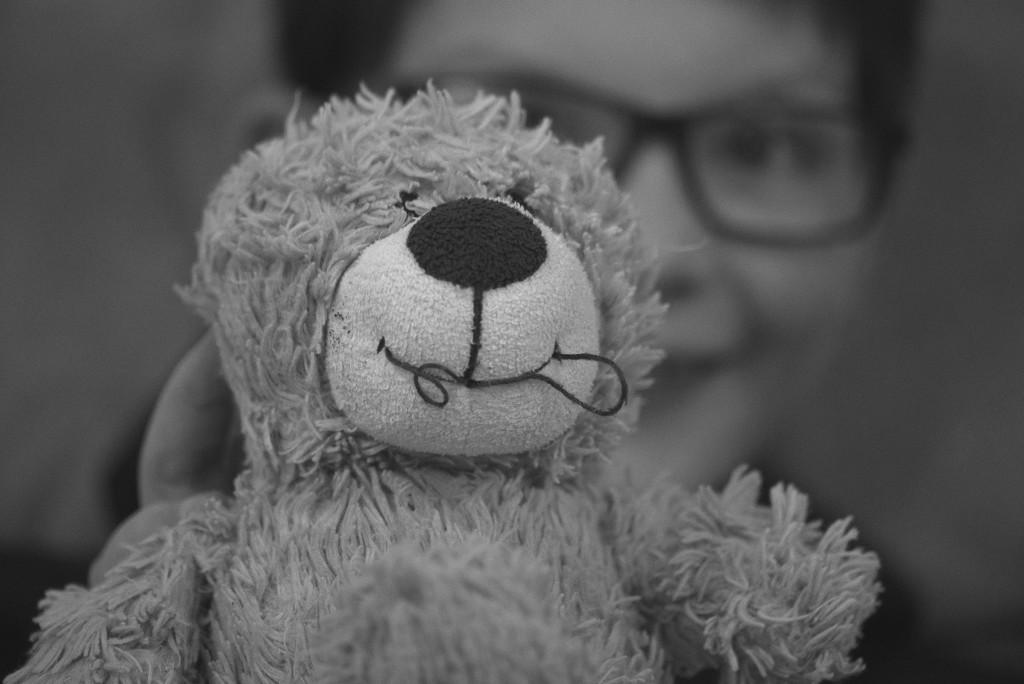 18th. Teddy. by newbank