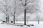 18th Jan 2021 - Snow 1