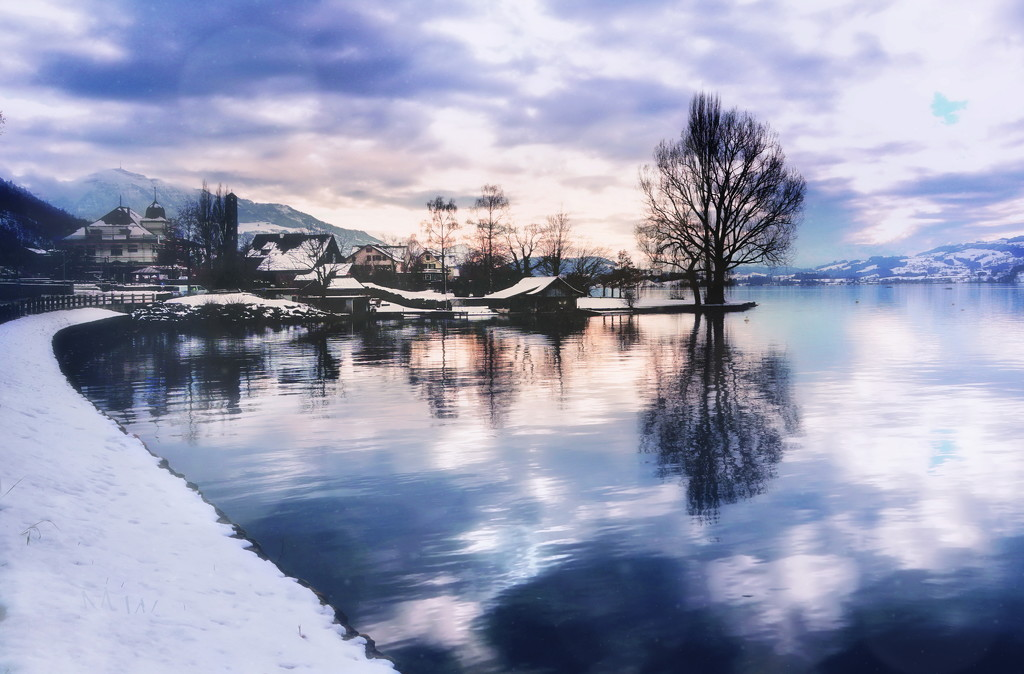 2021-01-18 colours of winter by mona65