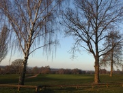 9th Jan 2021 - Bulwell Forest Golf Course