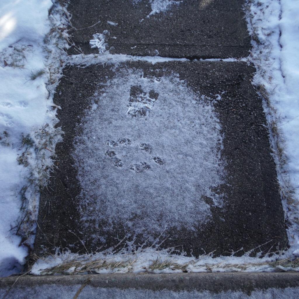 Footprints by spanishliz
