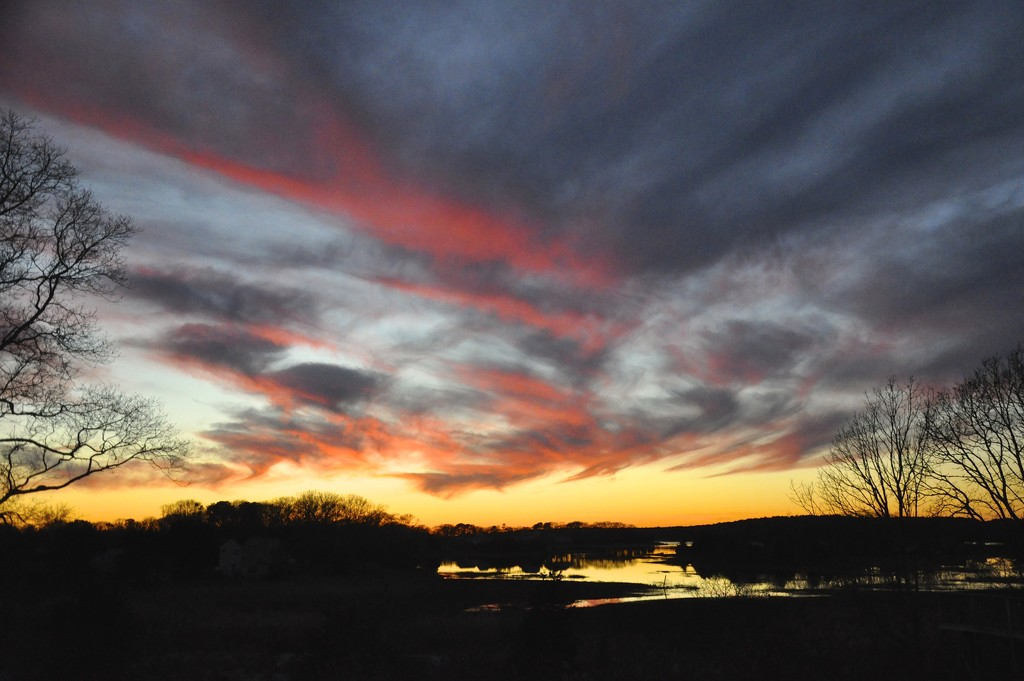 Last sunset over the marsh with trees - Sunset series #8 by sailingmusic
