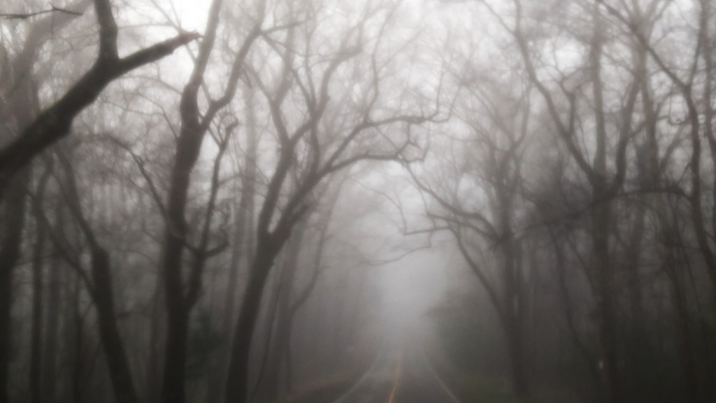 Foggy morning trek to town for essentials... by marlboromaam