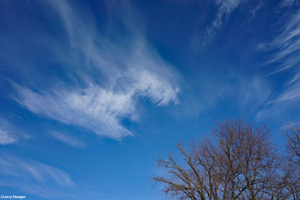 Winter sky 2 by larrysphotos