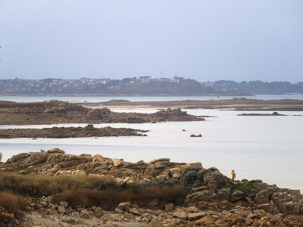 Low tide walk by etienne