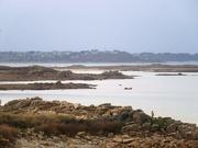 19th Jan 2021 - Low tide walk
