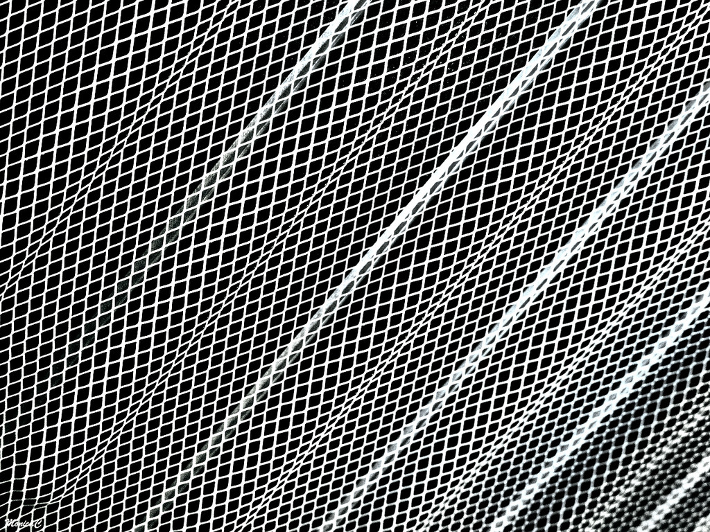 Black and white abstract by monicac