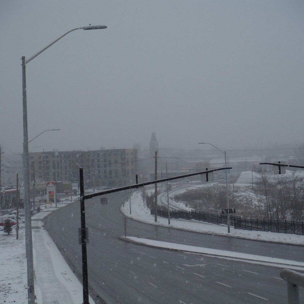 Snowy Tuesday by spanishliz