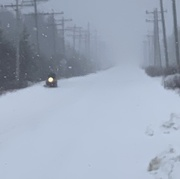 19th Jan 2021 - Snowstorm