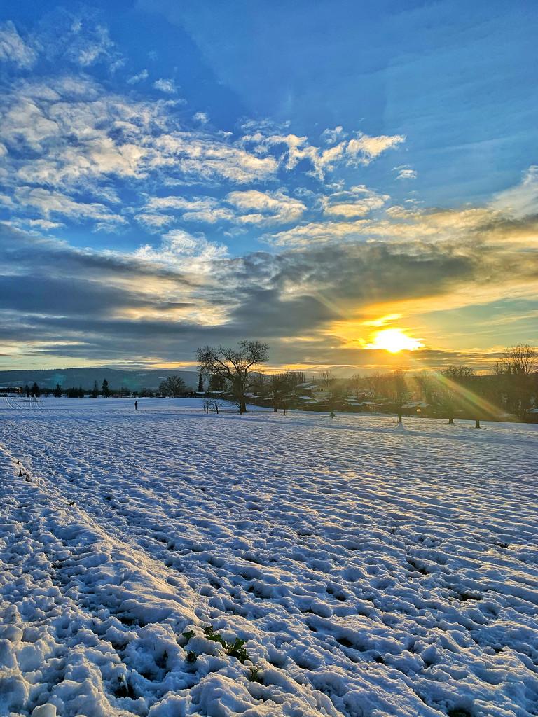 Between sky and snow.  by cocobella