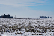 19th Jan 2021 - Farm land on a cold January day