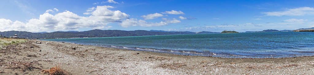 Can't beat Wellington on a good day - or Petone either! by maureenpp