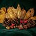 Den - Autumn