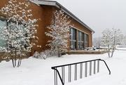 20th Jan 2021 - Snow 3