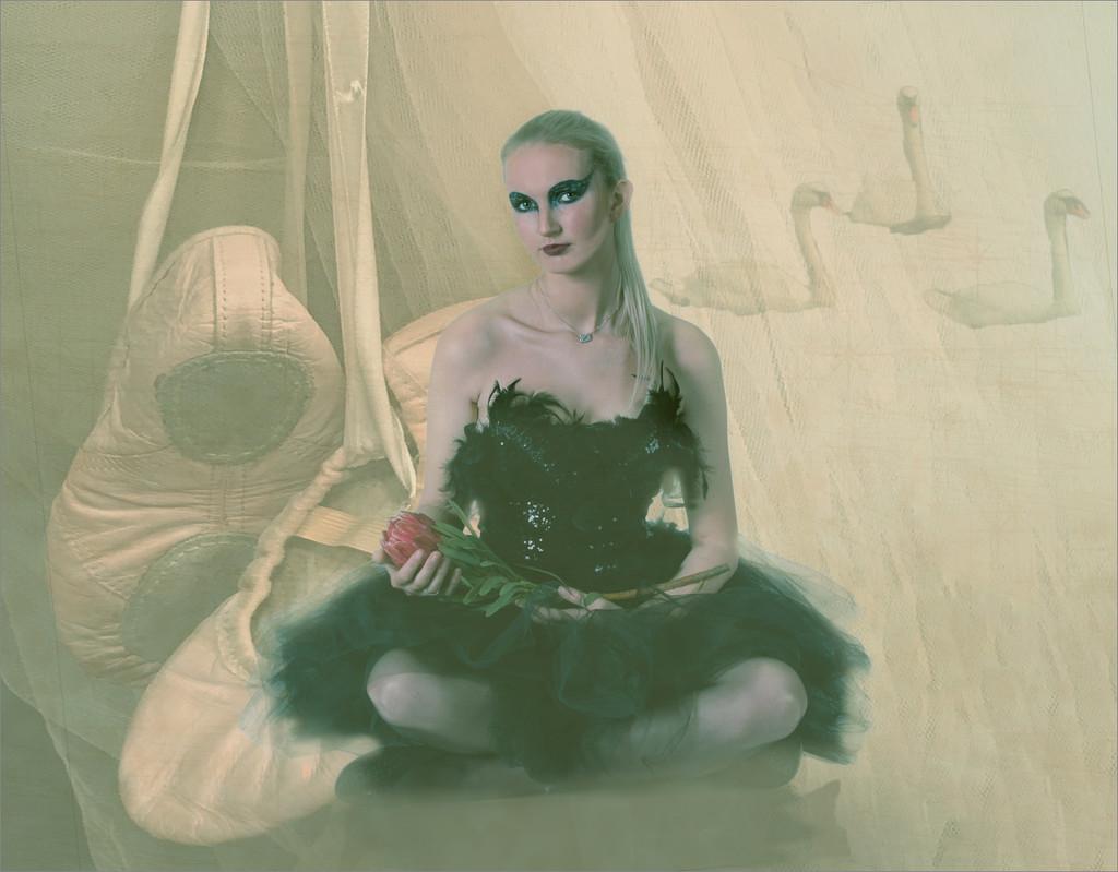 Swan rest by mv_wolfie
