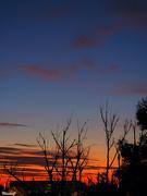 20th Jan 2021 - Just before sunrise