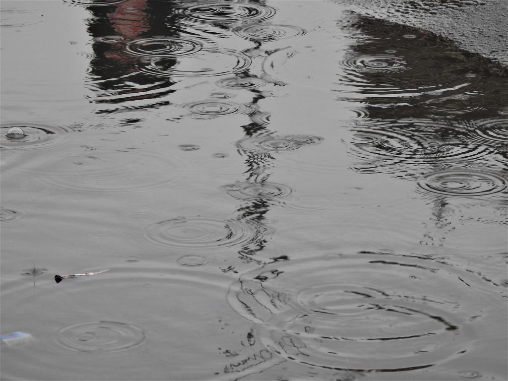 Wet 1 by oldjosh
