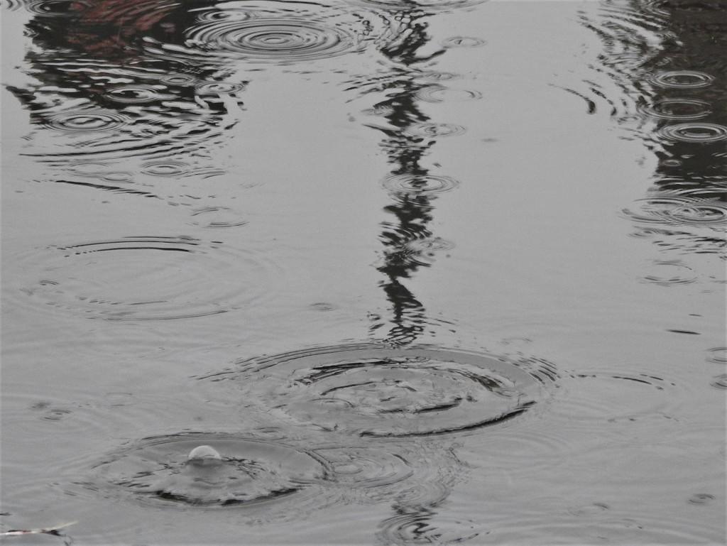 Wet 2 by oldjosh