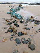 19th Jan 2021 - Washed Up ....... In Colour