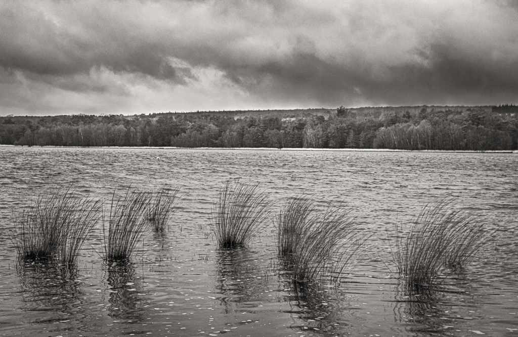 Looking Across the Lake... by vignouse