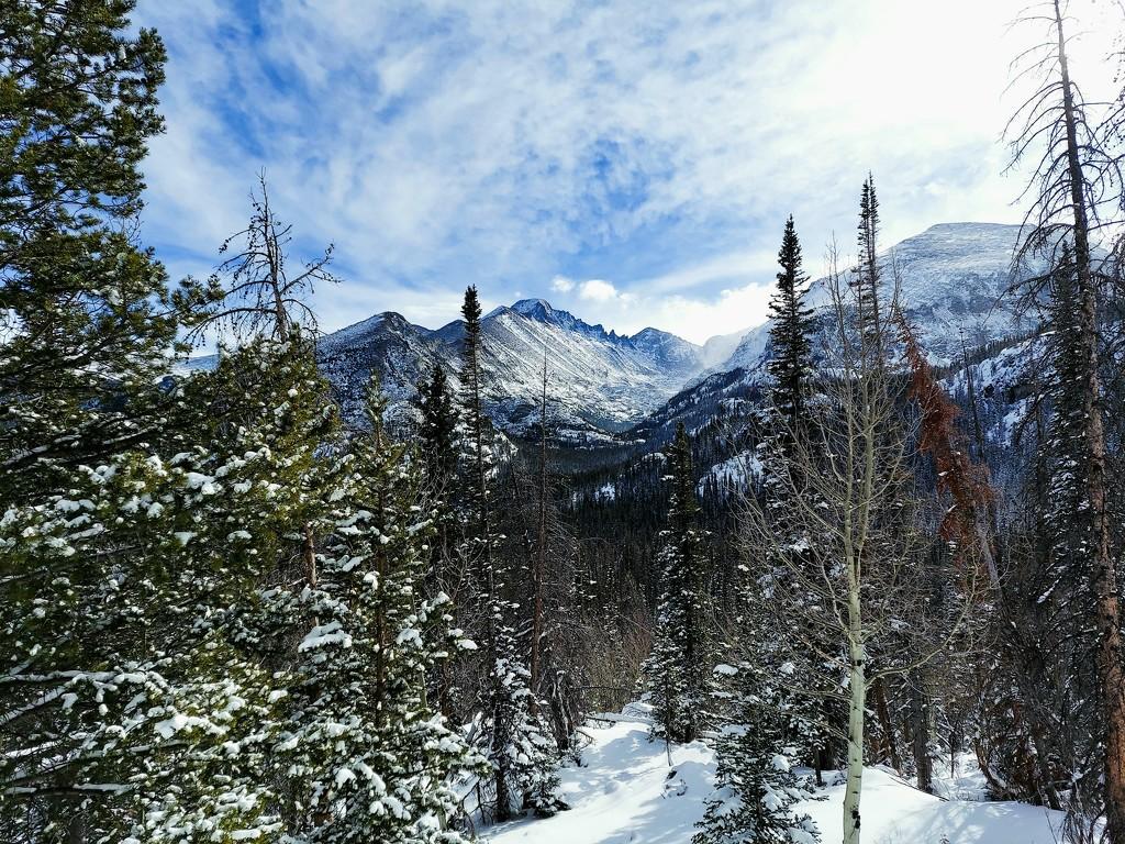 Colorado Winter by harbie