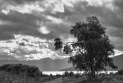 18th Jan 2021 - In the style of Ansel Adams