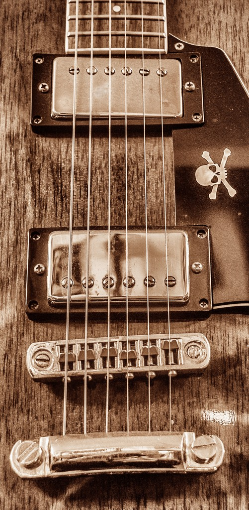 Humbuckers or Single coil? by swillinbillyflynn