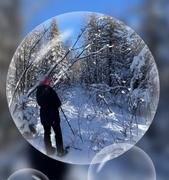 21st Jan 2021 - My Snowshoe Friend