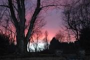 21st Jan 2021 - Dramatic sky