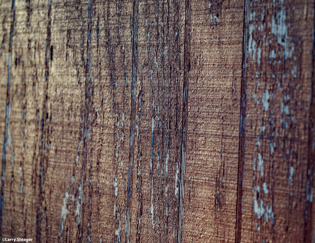 Weathered wood by larrysphotos