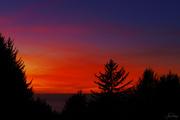 21st Jan 2021 - Sunset Missed