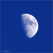22nd Jan 2021 - Daylight Moon