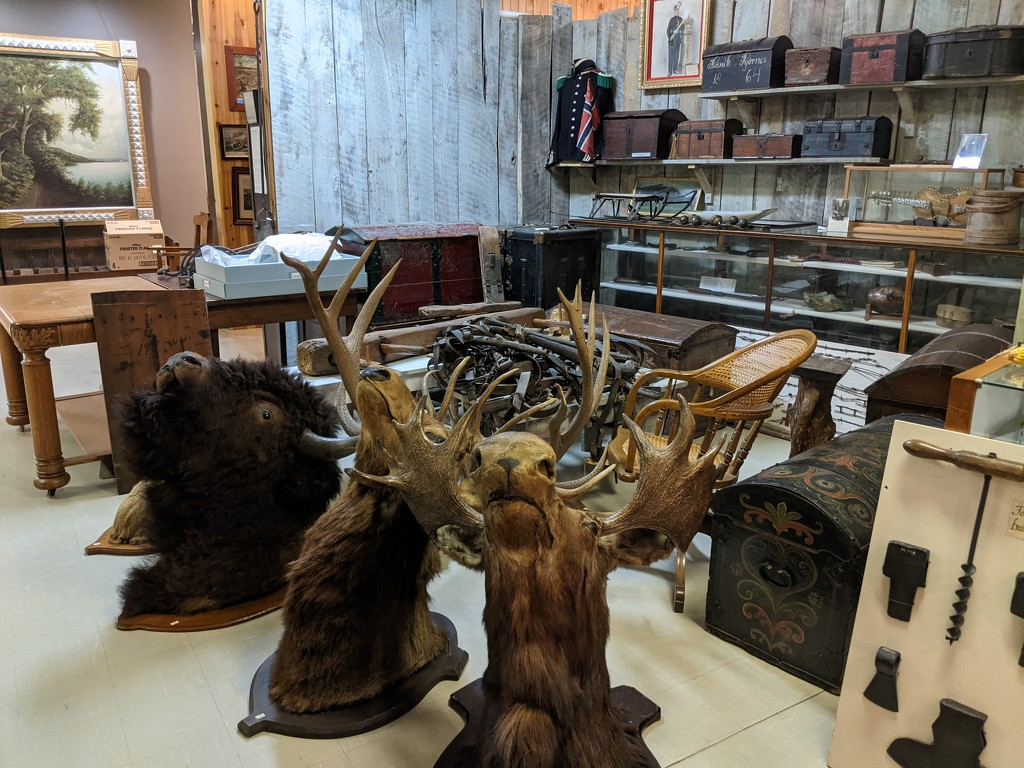 Exhibits in Transitions by prairiesmoke